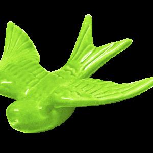 Andorinha verde