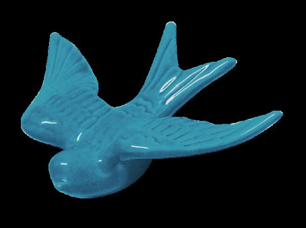 Blue swallow