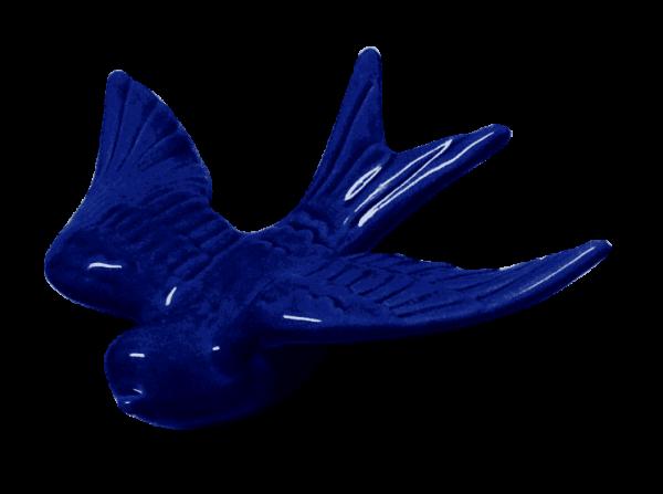 Cobalt swallow